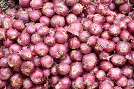 lot of fresh shallots as background.