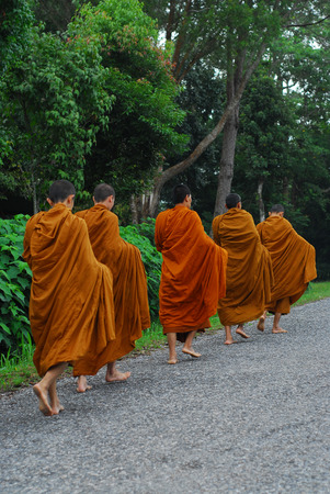 priest's ritual robes: Thai Buddhist monks are given food offering from people in the morning