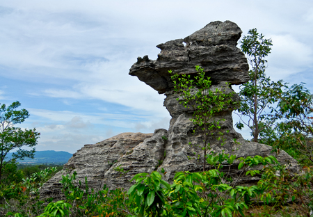 atmospheric phenomena: Cup shaped stone. The Pa Hin Ngam National Park in Chaiyaphum, Thailand