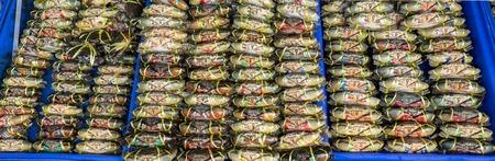 blue swimmer crab: Fresh Crab in a market Thailand