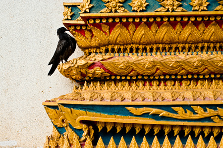 a crow on the temple, wat thai Stock Photo