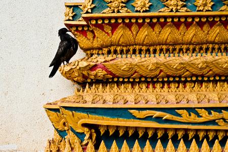 corvus: a crow on the temple, wat thai Stock Photo