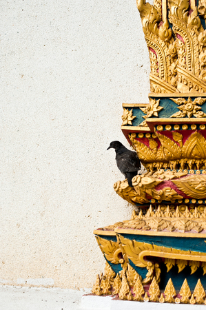coroner: a crow on the temple, wat thai Stock Photo