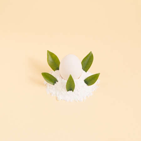 2021 White Easter egg surrounded by green natural leaves. Creative composition lay out on a pastel background.