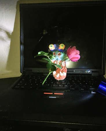 laptop Schreck Zdjęcie Seryjne