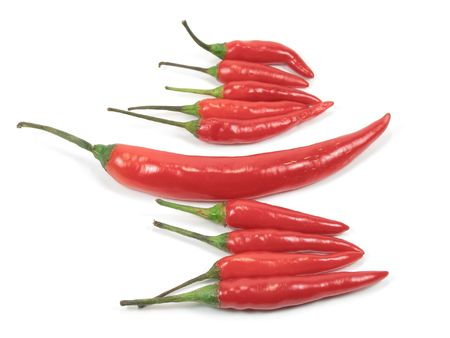 standout: a red chili pepper standout in the group, isolated Stock Photo