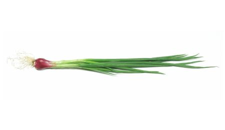 A bundle of green onion in isolated background