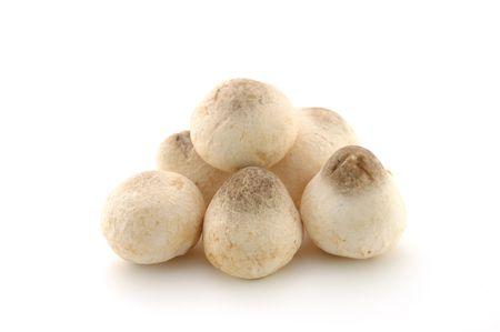healthful: Straw hongos aislados en fondo blanco