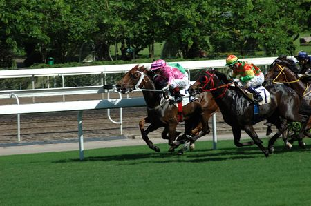 Horse racing game Stock Photo