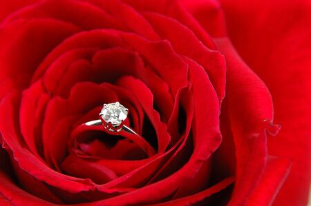 Close up of engagement ring in red rose Stock Photo