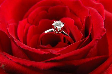 Gros plan de la bague de fian�ailles en rouge, rose