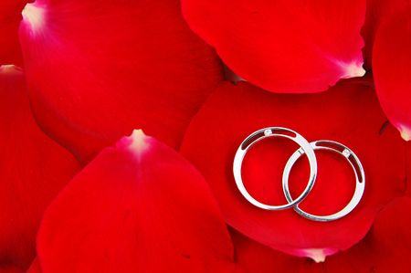 Wedding rings in red rose petals background,  with copyspace photo
