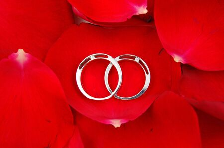 Close up of wedding rings in red rose petals background photo