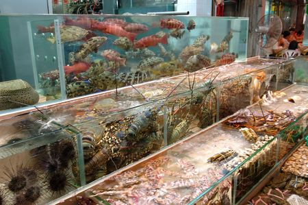 Seafood in tank displayed at a seafood restaurant photo