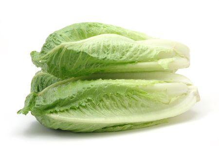 romaine: Romaine lettuce in isolated white background