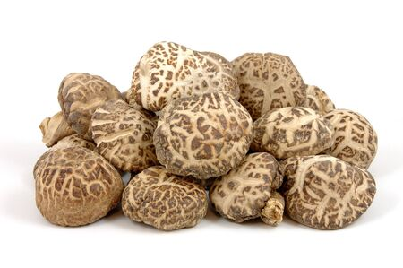shiitake: Shiitake mushrooms in isolated white background Stock Photo