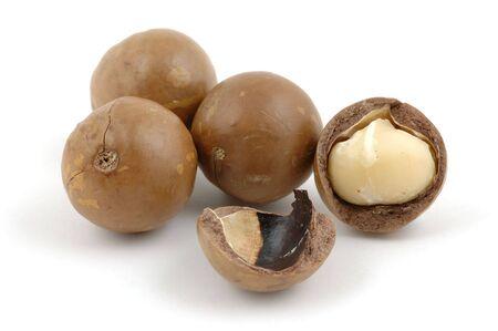 macadamia: �gren� et noix de macadamia en coque isol�e sur fond blanc