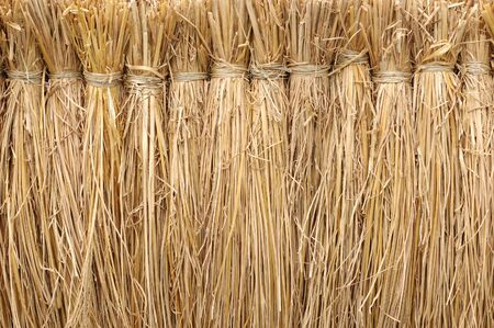bunched: Texture background of bunched straw