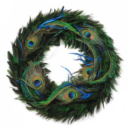 Peacock feather wreath in isolated white background Stock Photo
