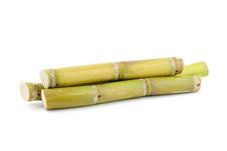 Close up of sugar cane in isolated white background Stock Photo