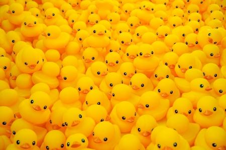 pato de hule: Grupo de pato de goma amarillo