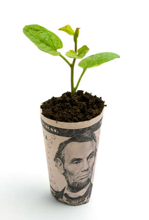 plantlet: Growing business Stock Photo