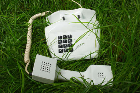 telephone in unusual place Stock Photo - 4823602