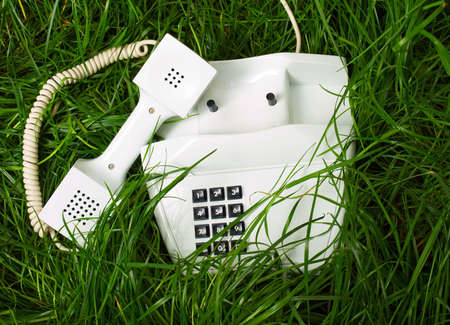 telephone in unusual place Stock Photo - 4823601
