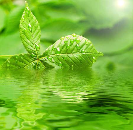 ondulation: pluie