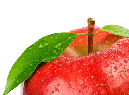 apple red: Ripe red apple on a white background  Stock Photo