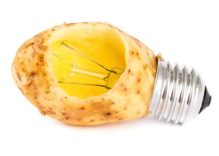 potato lightbulb  photo