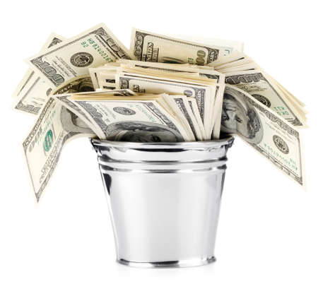 bucket of money: Dollar in pail