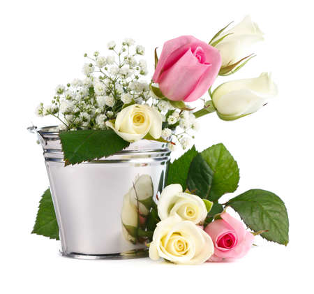 Beautiful Roses in metallic bucket isolated on white background photo