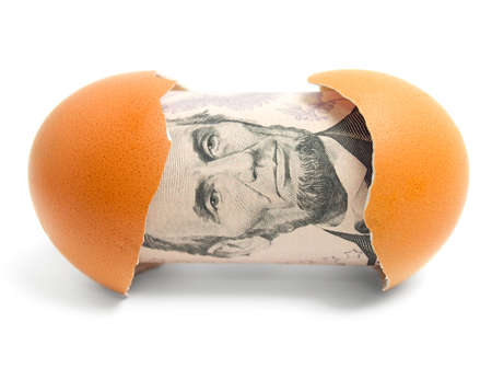 Money in eggshell  photo