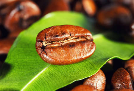 Coffee beans and green leaf Stock Photo - 12686177