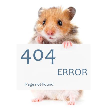 Little hamster keeps paws white poster 404 error 스톡 콘텐츠