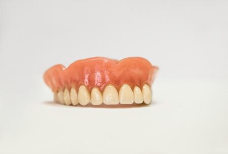 Dental phantom, dentures isolated on white background