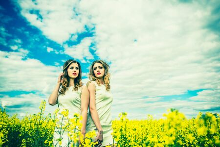 light hair: Two pretty girls in the yellow field Stock Photo