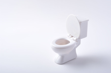 a toilet seat: Western-style rest room, toilet
