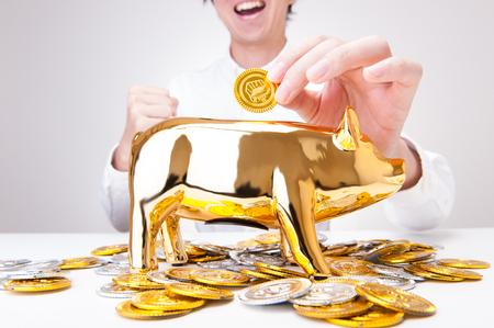 bank gold pig