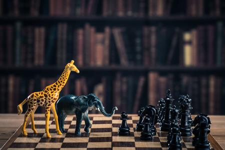 overfishing: Chess and animals