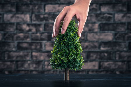 green eco: Tree planting Stock Photo