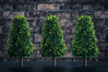plantando arbol: La plantación de árboles