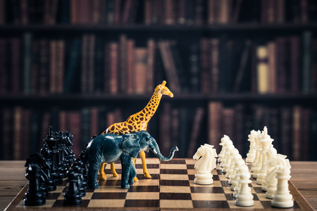overfishing: Chess and animals
