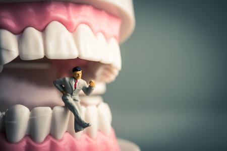 healthy teeth: Los dientes y un ser humano