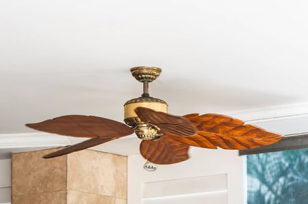ceiling fan: Ceiling fan