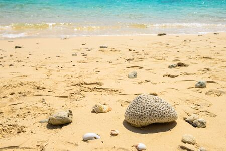 sandy beaches: Sandy beaches and coral Stock Photo