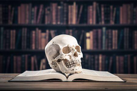 本と頭蓋骨 写真素材