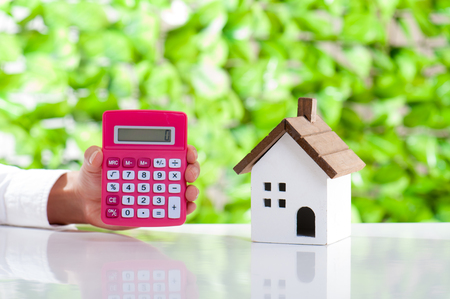 Het model, de groene achtergrond