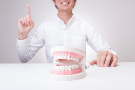 Model of the teeth and men